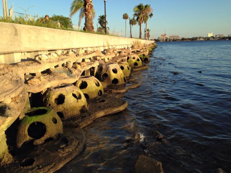 Living shoreline - reef balls