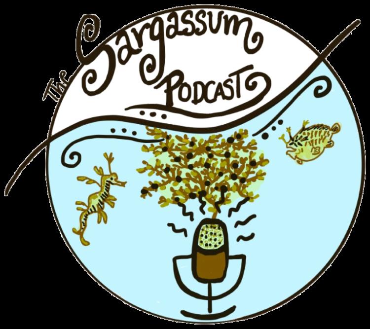 Sargassum Podcast